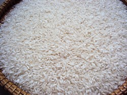 SHORT RICE 10% BROKEN (SOC MIEN)