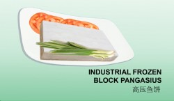 INDUSTRIAL FROZEN BLOCK PANGASIUS
