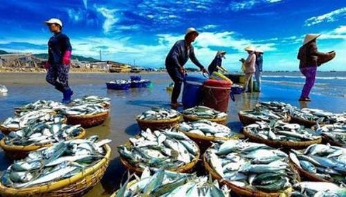 Seafood, textile stocks soar thanks to good business performance