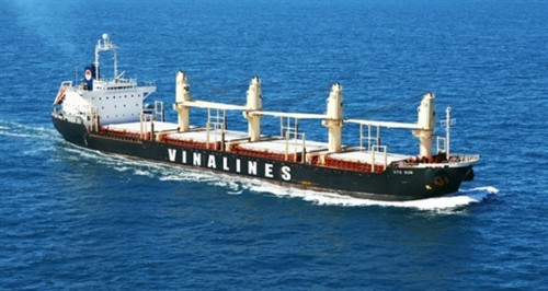 Vinalines to hold shareholders' meeting in June