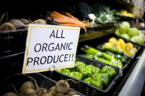 Vietnam strives to increase organic agricultural produce exports