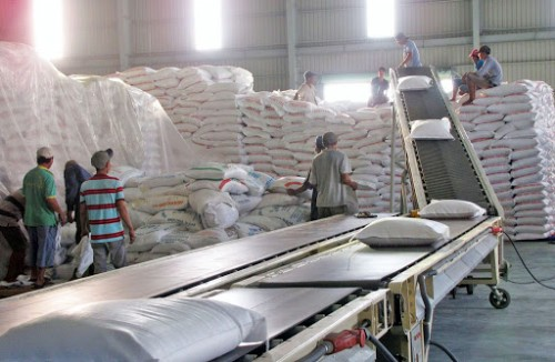 Việt Nam needs to find new rice markets to replace China: experts