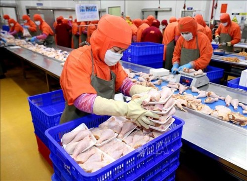 Russia to import Việt Nam's processed chicken