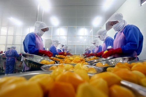Việt Nam calls for investment in fruit and vegetable processing