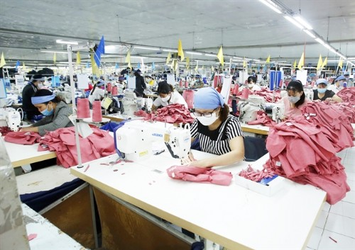 VN needs to develop raw materials production to take advantage of EVFTA